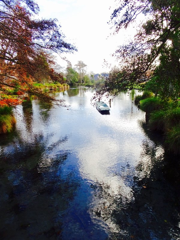 The Avon River meanders throughout Christchurch; on our walks we would cross it multiple times.