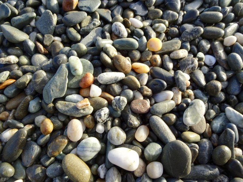 We stopped on this west coast beach to look for pounamu (jade) and any other treasures we might find.