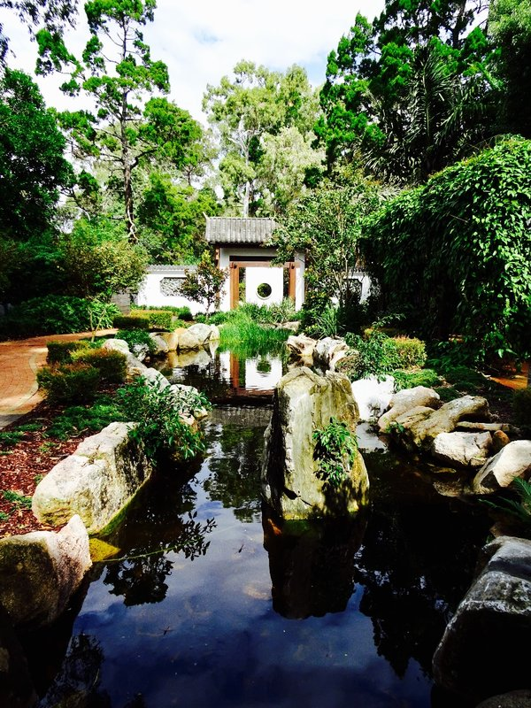 The Chinese garden at the Botanic Gardens.