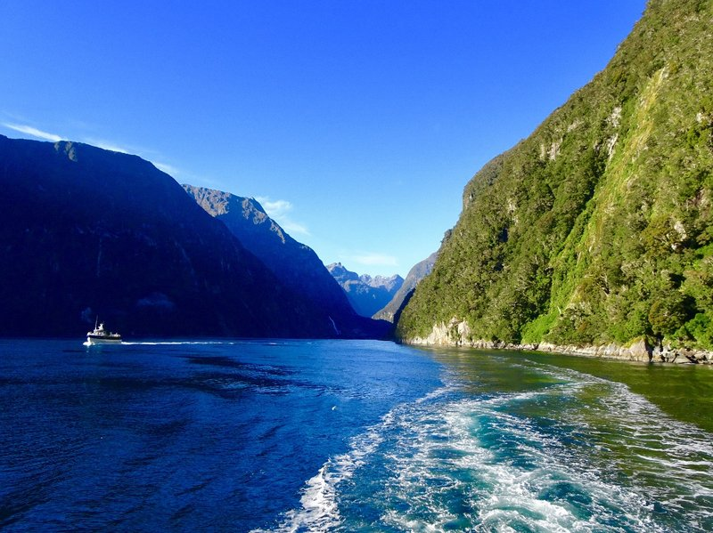 The beginning of our cruise through the Milford Sound.