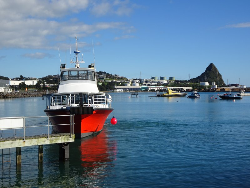 This is the Port of Taranaki with the Paritutu Rock on the right side.