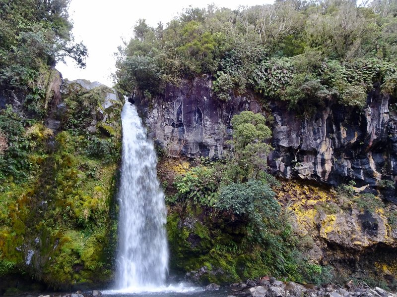 """Dawson Falls is a 60 ft. waterfall in Egmont NP. There is a small power station here that is """"one of the oldest continuously operating power stations in the world."""""""
