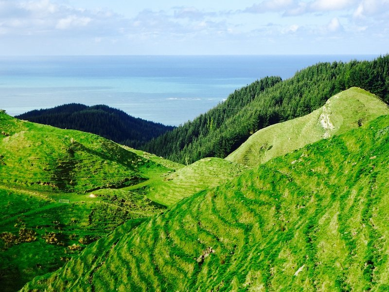 This was the view that we had as we climbed up along the coast and worked our way across the Onenui Station.