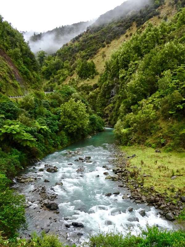 We followed the Waiokea River through the Waiokea Gorge. This is the longest river in NZ at 264 miles.