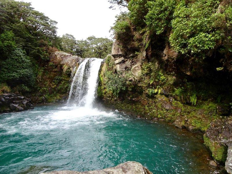 Tawhai Falls is located close to the Whakapapa Village in Tongariri NP.