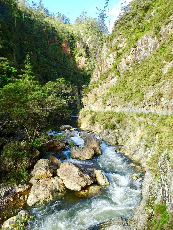 The Waitawheta River, coming out of the gorge, near where it meets the Ohinemuri River.