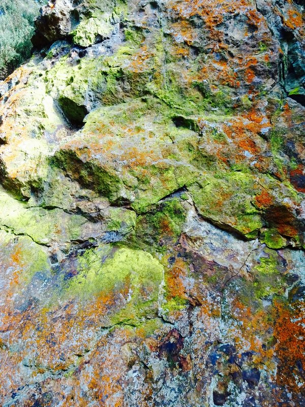 The colorful rock walls of the Waitwheta Gorge.