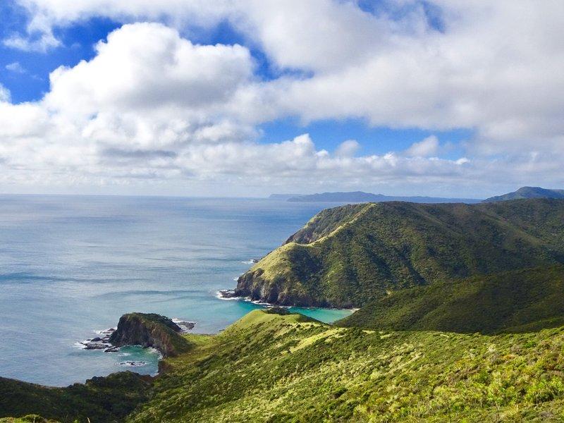 The Tasman Sea, as viewed on the path to the Cape Reinga Lighthouse.