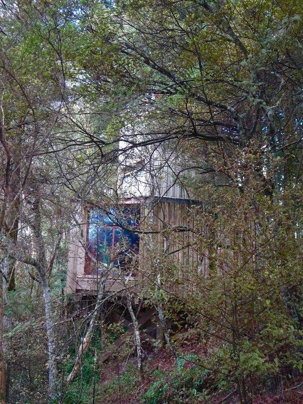 Waterfall Chapel is hidden away in the trees.