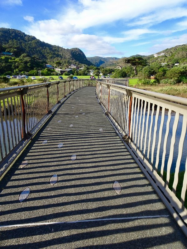 The 'Story of the Eel' footbridge links the Piha Domain, with South Piha Beach, and the famous Lion Rock. It was designed by a local artist; it celebrates the short and long finned eels that still live under the bridge, in the Piha Stream.