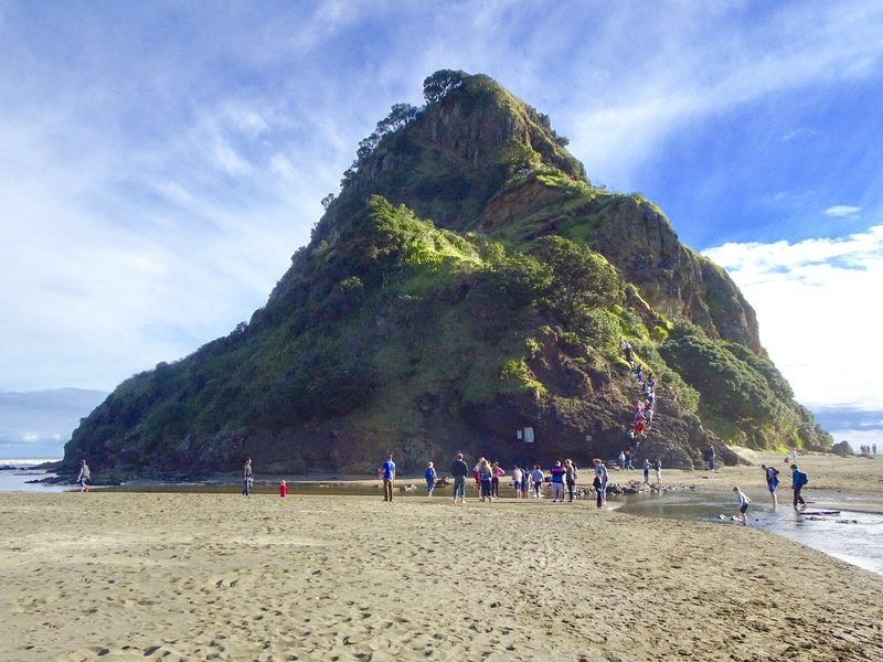 The Lion Rock as viewed when entering Piha Beach. To see the lion shape, you have to view it from the side. There is a climb part way up the rock; it starts at the tail and ends at a grassy point at shoulder level. The upper portion was closed after a rock slide several years ago.