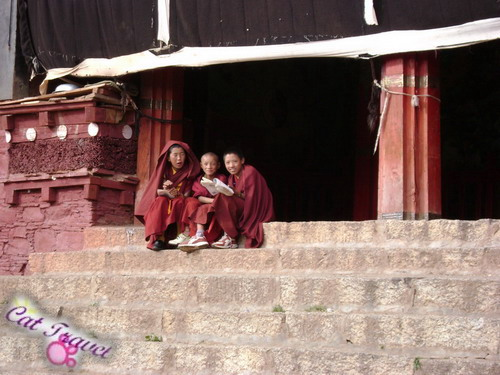 Shangri-la tour--Litang Changqingchunke'er Monastery