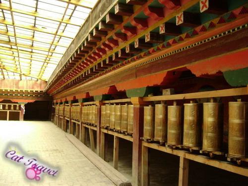 Shangri-la tour--Songzanlin Monastery 2