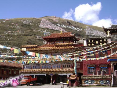 Shangri-la tour--Tagong Monastery