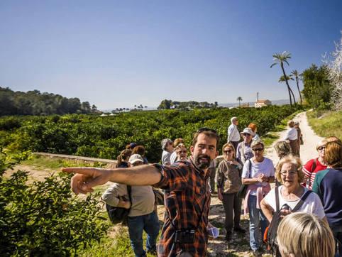 valencia-orange-tree-garden-tours