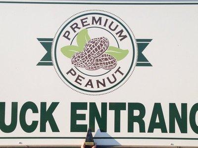Premium Peanut