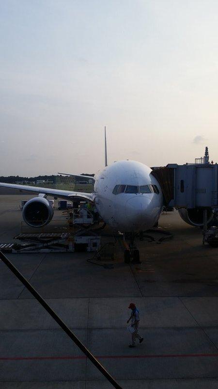 Big Bird Homeward bound.
