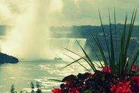 Tropical Niagara Falls