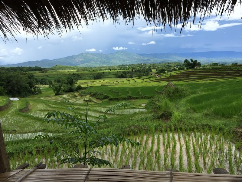 Rice fields near Keng Tung