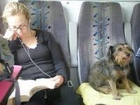 Company on trains