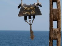 Healthy Long Life.