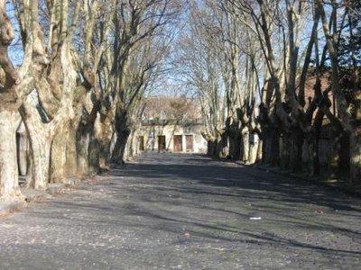 uruguay_045.jpg