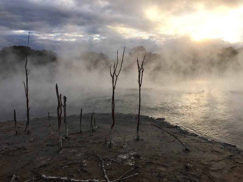 Volcanic ponds in city park in Rotorua