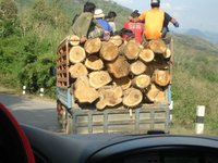 Logs and Loggers