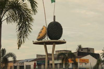 166188196564561-Durian_Round..Hua_Penang.jpg
