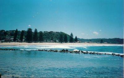 Avoca Beach Pix - Avoca Beach