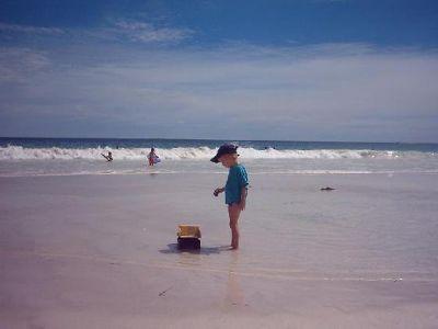 2178028-Mullalloo_Beach_Mullalloo_Beach.jpg