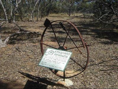 3089791-Australian_bush_Watheroo.jpg