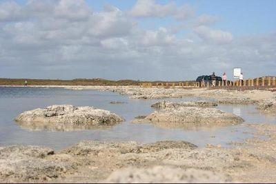 3499336-Stromatolites_Perth_Cervantes.jpg