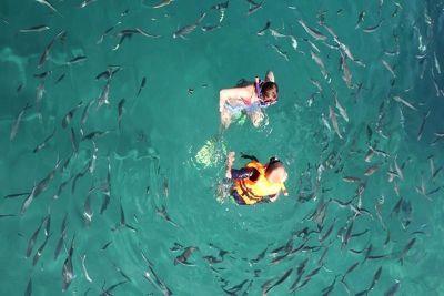 4910764-Snorkling_Pulau_Tioman_Pulau_Tioman.jpg