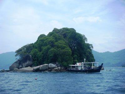 4910778-Diving_Pulau_Tioman_Pulau_Tioman.jpg