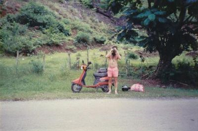 597977-Moorea_scooter_Moorea.jpg