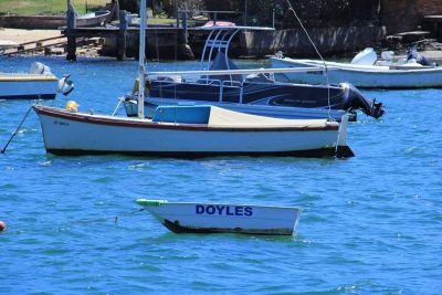 62293227715243-VT_Meet_Wats..ose_Sydney.jpg