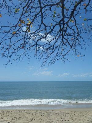 635249227178221-Trinity_Beac..ose_Cairns.jpg
