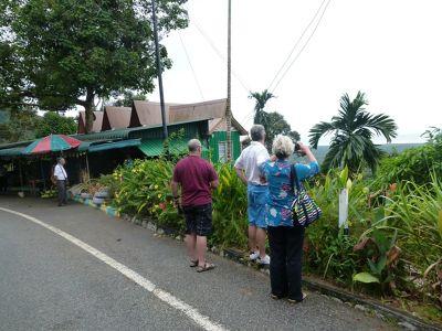 736226116577118-Driving_arou..ose_Penang.jpg