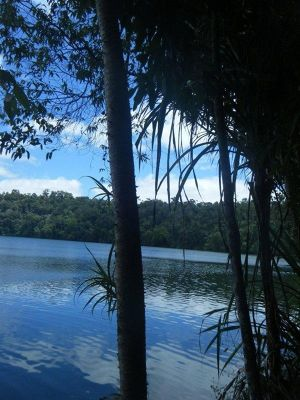 823758784662487-Lake_Eacham_..ose_Cairns.jpg