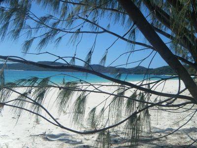 977032024639944-Whitehaven_B..rlie_Beach.jpg