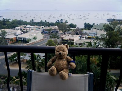 Trekki's Nobby Loved the View