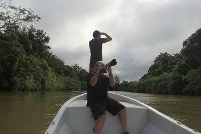 Jungle_River_3.jpg