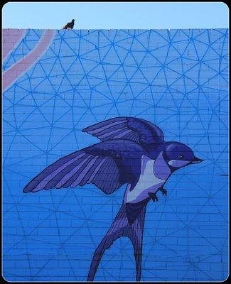 Leederville_-_Grafitti_2.jpg