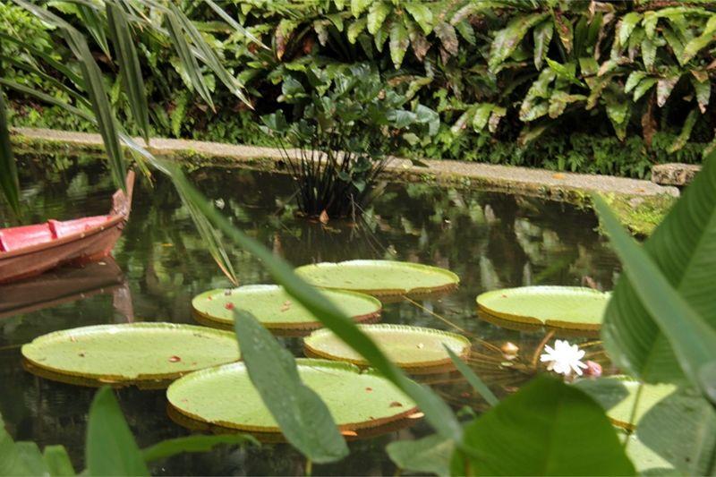 Penang Spice Garden by aussirose