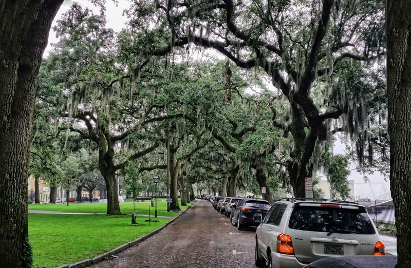Savannah Streets if