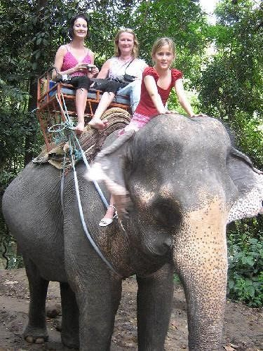 Koh Samui Elephant trekking