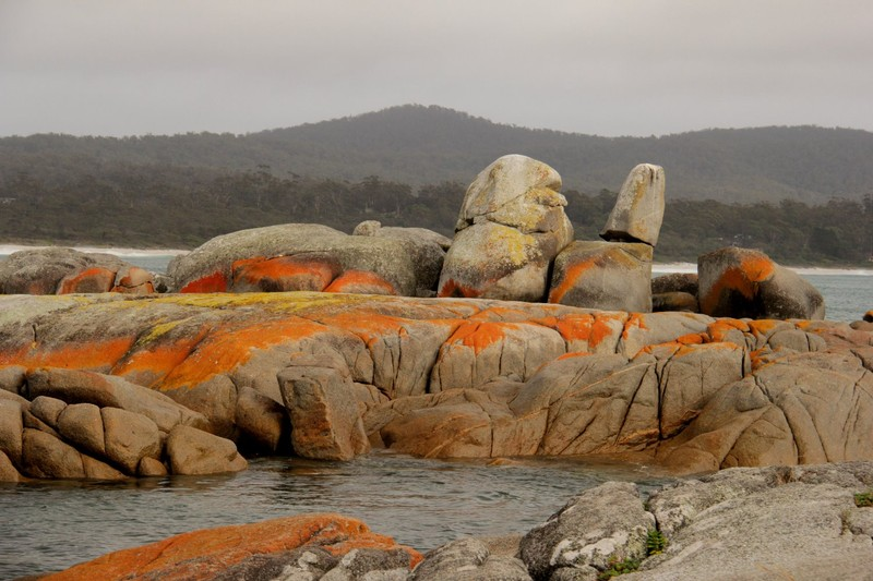 Bay of Fires 26