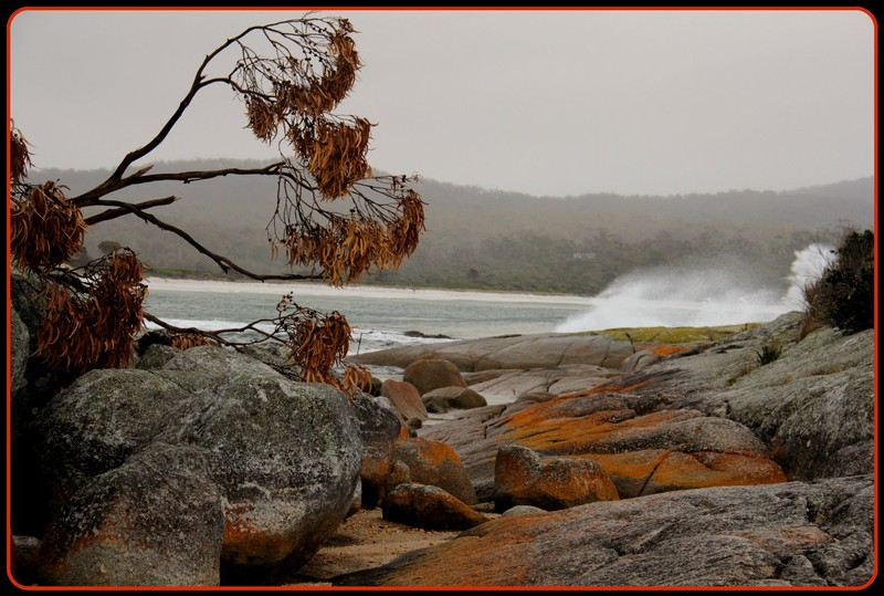 Bay of Fires 22