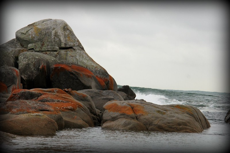 Bay of Fires 19